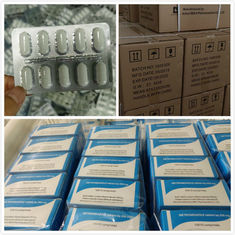 Medicine Grade Antipyretic Analgesics BBCA Acetaminophenol Paracetamol Tablets
