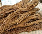First Grade Traditional Chinese Medicine / Angelica Sinensis Extract supplier