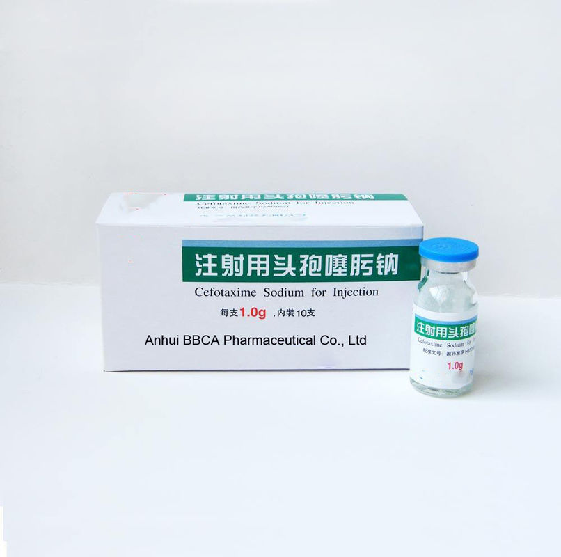 Powder for Injection Pharmaceutical Grade Cefotaxime Sodium for Injection supplier